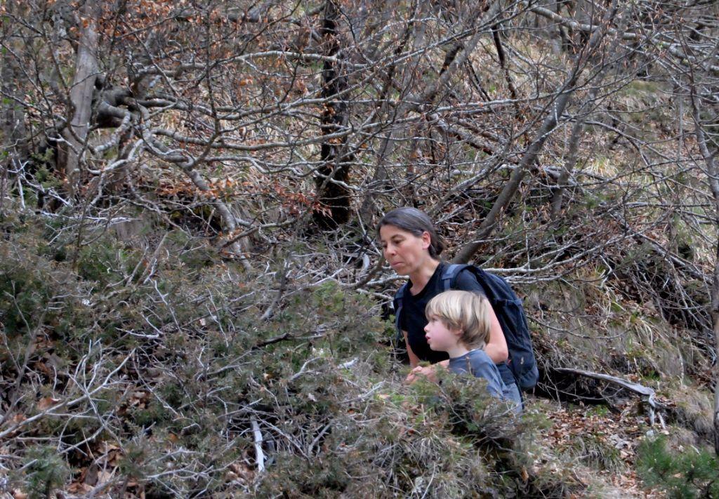 Andate-in-montagna-con-i-vostri-figli